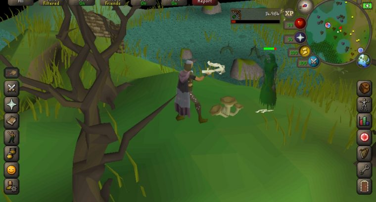 The weapon is well suited to RuneScape player